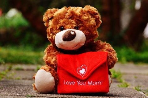 teddy-1338923_960_720.jpg